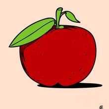 vign-coloriage-fruit-bkr_agh