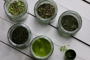 Comment reconnaitre le meilleur thé vert