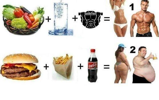 alimentation-ventre-plat