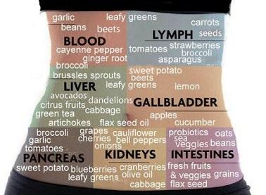 Que faire ? Quel aliments consommer pour vos recettes jus detox ? Pour le sang, pancréas... etc...