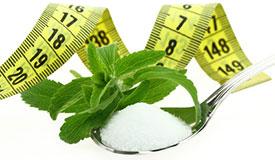 Stevia pour perdre du poids